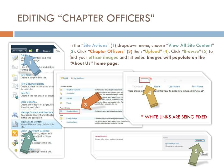 """EDITING """"CHAPTER OFFICERS"""""""