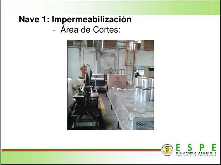 Nave 1: Impermeabilización