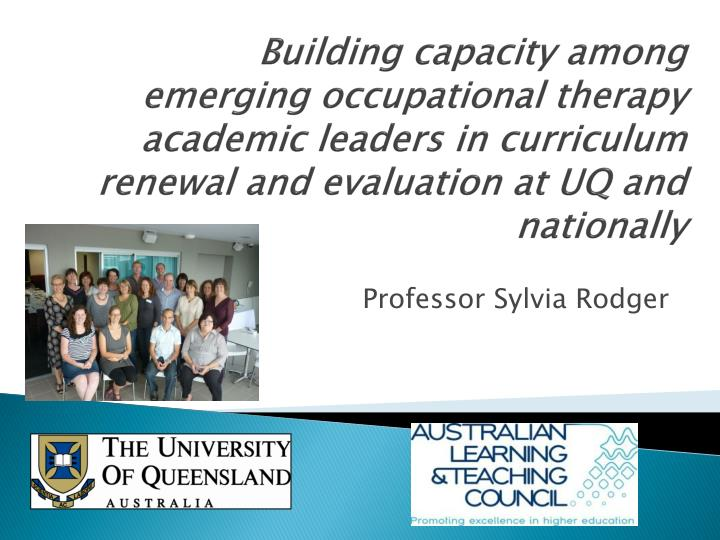 Building capacity among emerging occupational therapy academic leaders in