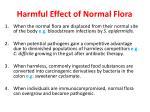 harmful effect of normal flora