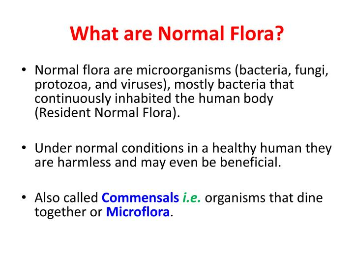 What are Normal Flora?