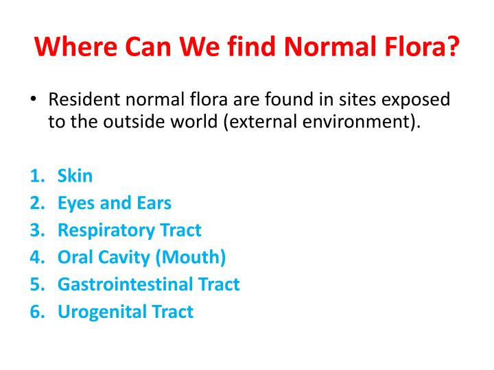 Where Can We find Normal Flora?