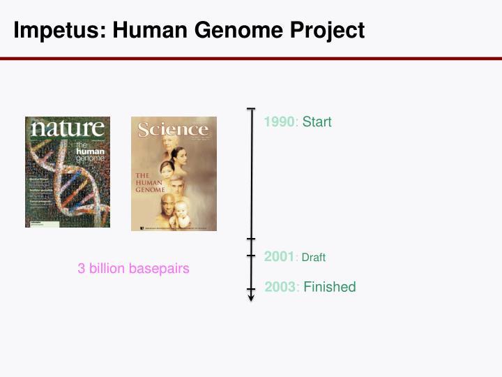 Impetus: Human
