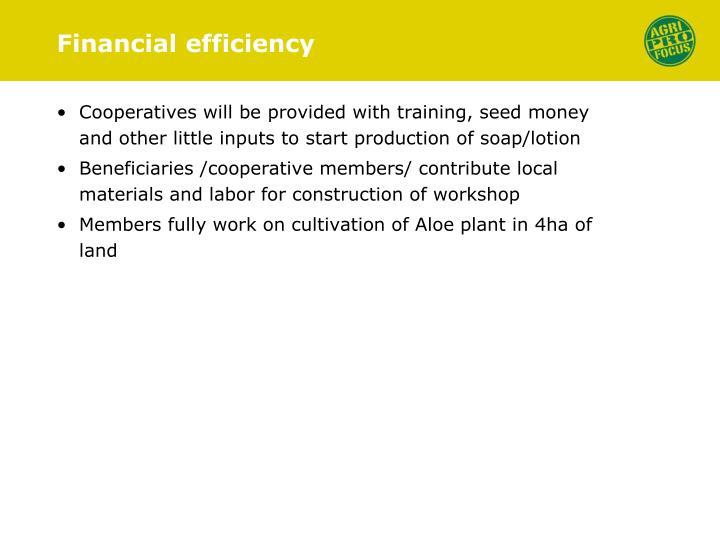 Financial efficiency