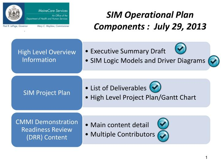 sim operational plan components july 29 2013