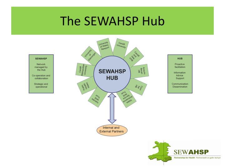 The SEWAHSP Hub
