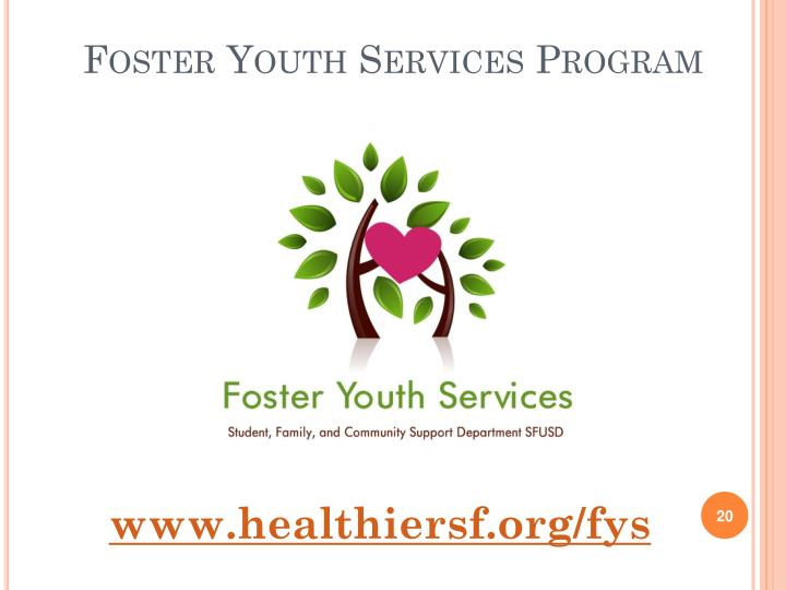 Foster Youth Services Program