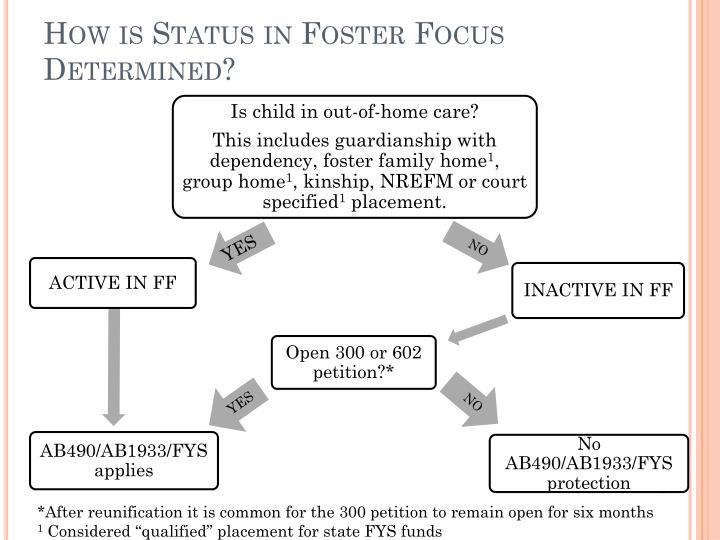 How is Status in Foster Focus Determined?