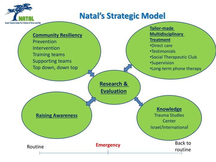 Natal's Strategic Model
