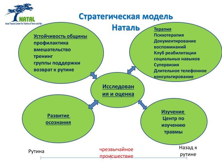 Стратегическая модель Наталь