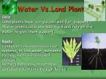 water vs land plant