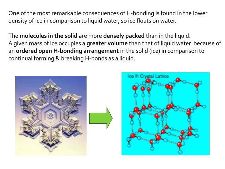 One of the most remarkable consequences of H-bonding is found in the lower density of ice in comparison to liquid water, so ice floats on water.