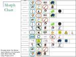 morph chart