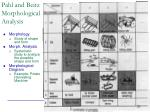 pahl and beitz morphological analysis
