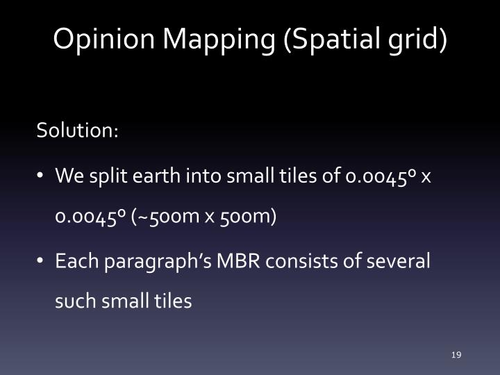 Opinion Mapping (Spatial grid)
