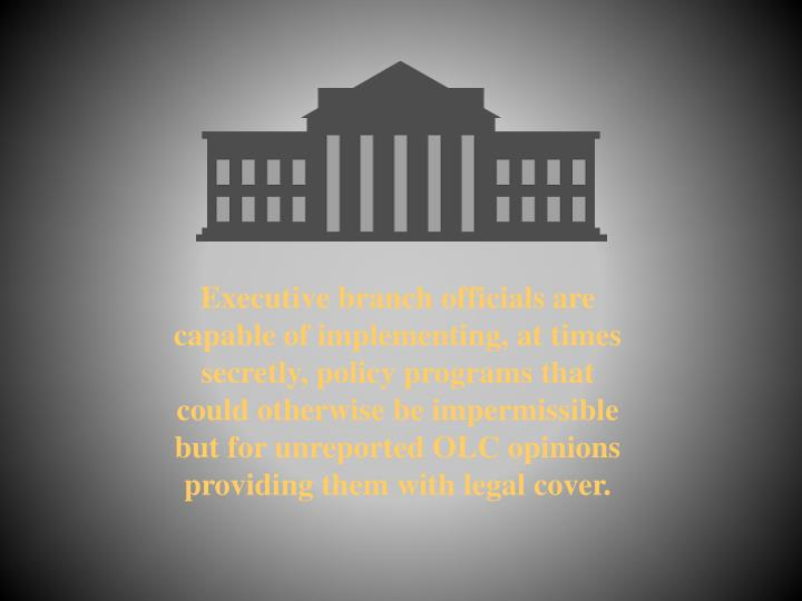 Executive branch officials are capable of implementing, at times secretly, policy programs that