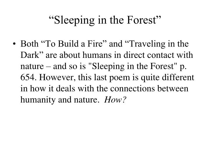 """""""Sleeping in the Forest"""""""