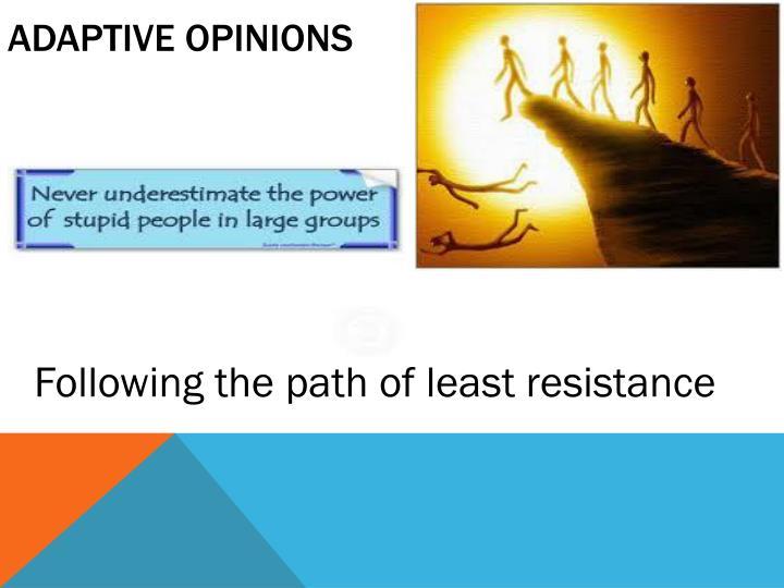 Adaptive opinions