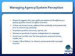 managing agency system perception
