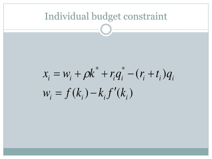 Individual budget constraint