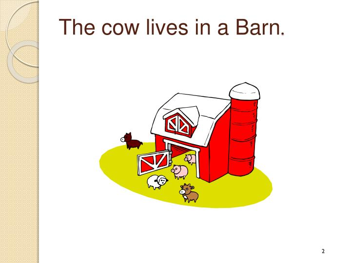 The cow lives in a Barn