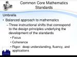 common core mathematics standards