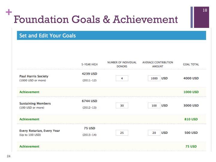 Foundation Goals & Achievement