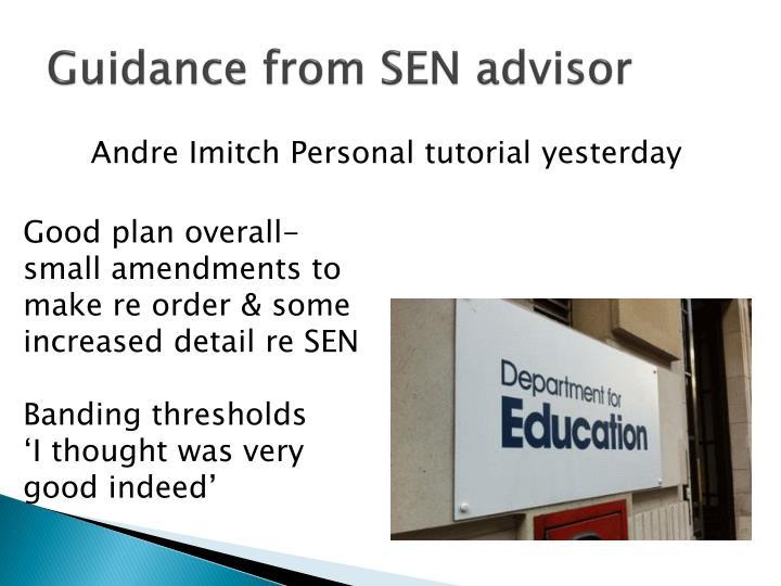Guidance from SEN advisor