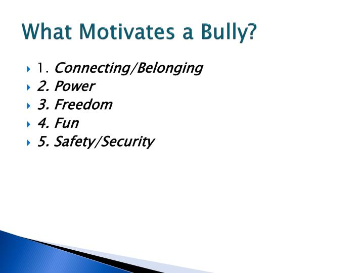 What Motivates a Bully?