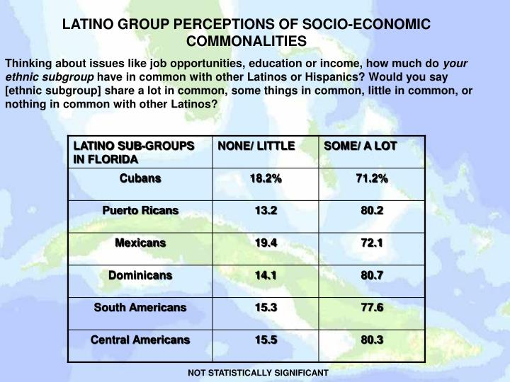 LATINO GROUP PERCEPTIONS OF SOCIO-ECONOMIC COMMONALITIES