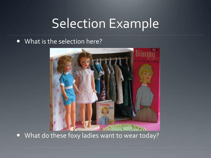 Selection Example