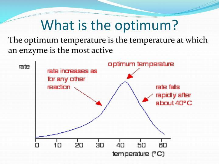 What is the optimum?