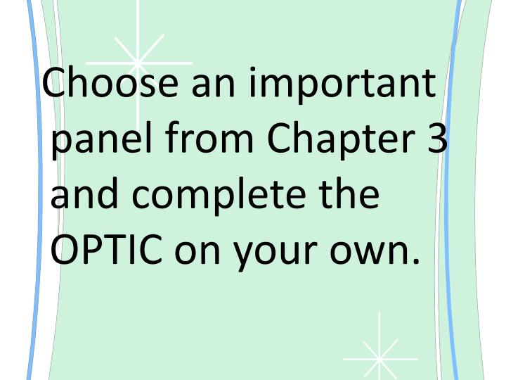 Choose an important panel from Chapter 3 and complete the OPTIC on your own.