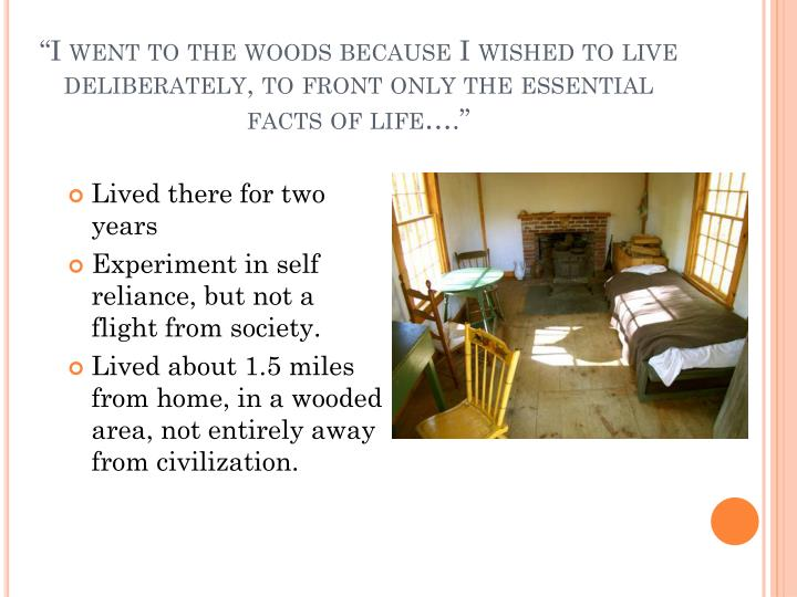 """I went to the woods because I wished to live deliberately, to front only the essential facts of life…."""