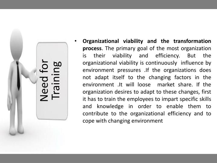 Organizational viability and the transformation process