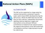 national action plans naps