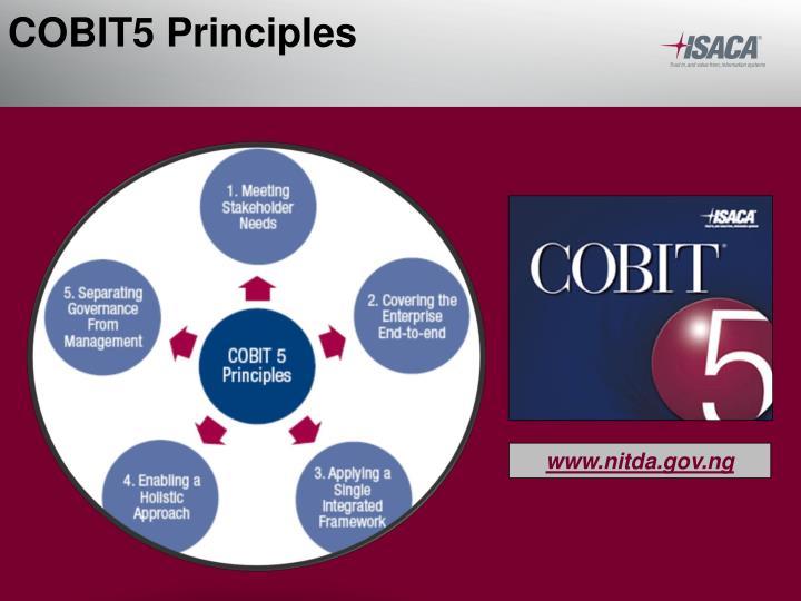 COBIT5 Principles