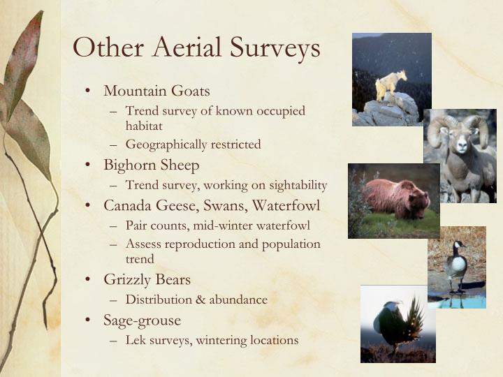 Other Aerial Surveys