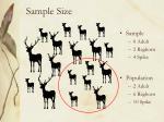 sample size1