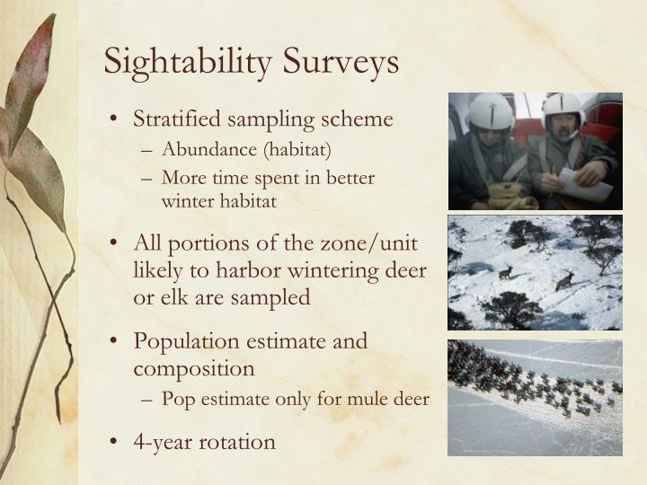 Sightability Surveys