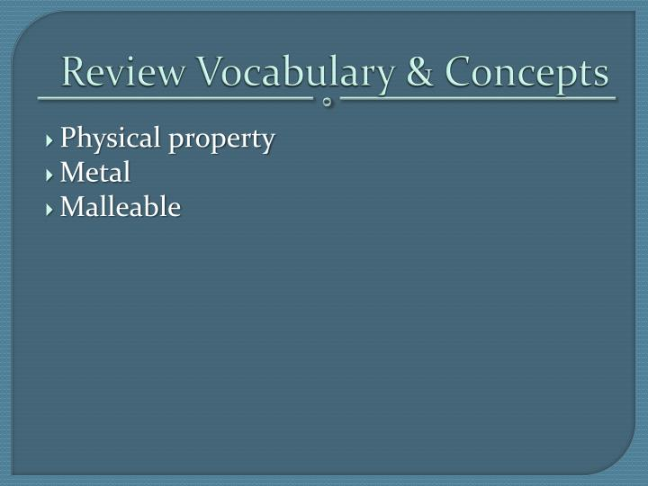 Review Vocabulary & Concepts