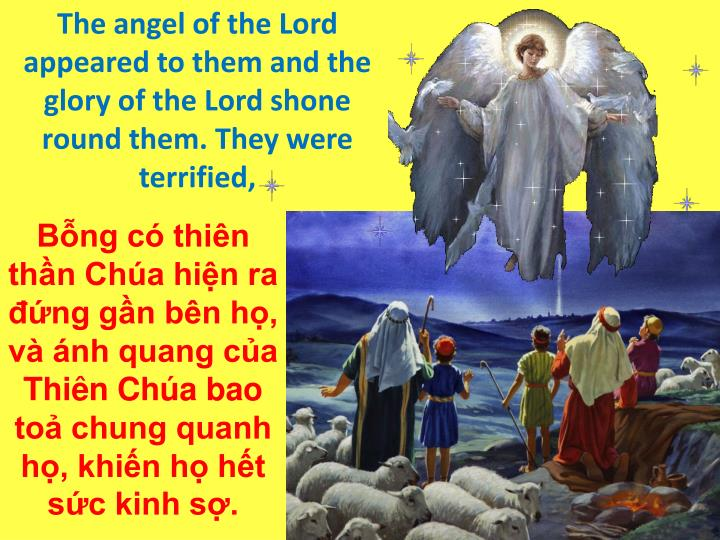 The angel of the Lord appeared to them and the glory of the Lord shone round them. They were terrified,
