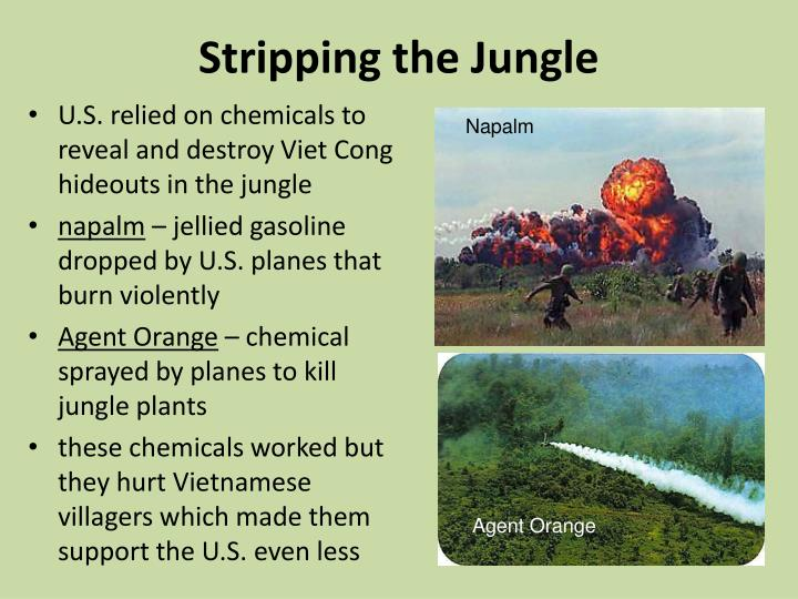 Stripping the Jungle