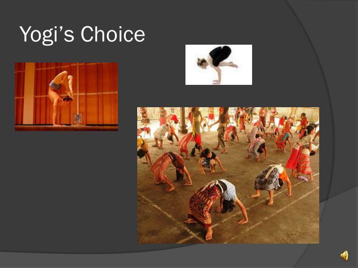 Yogi's Choice