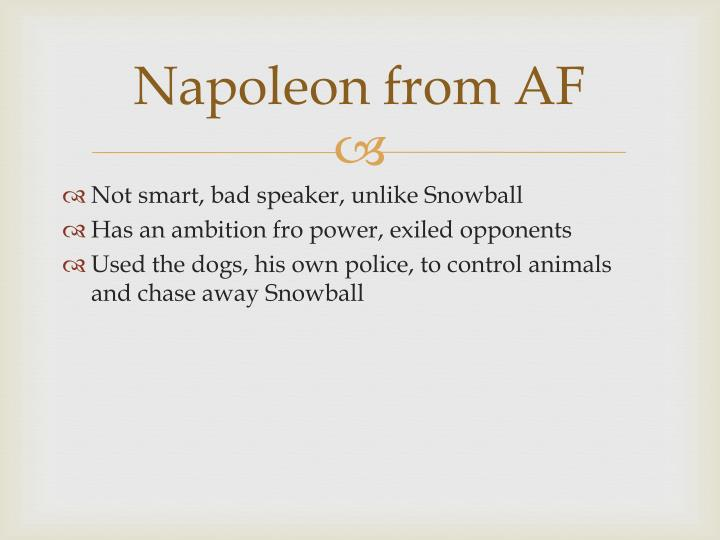 Napoleon from AF