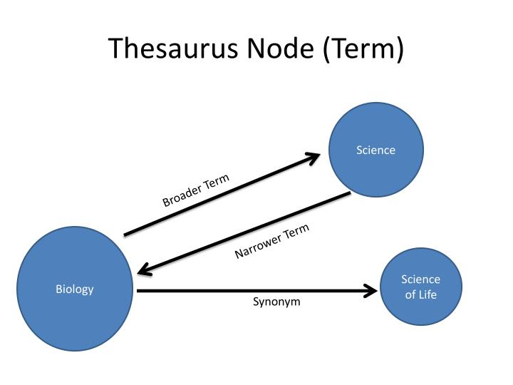 Thesaurus Node (Term)