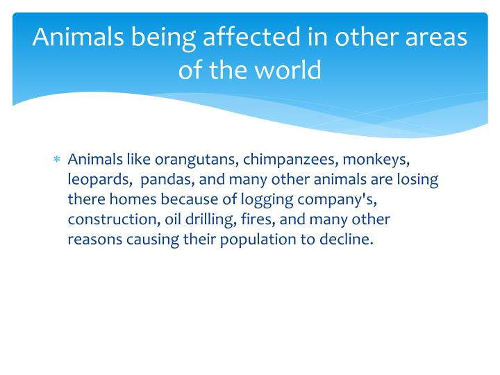 Animals being affected in other areas of the world