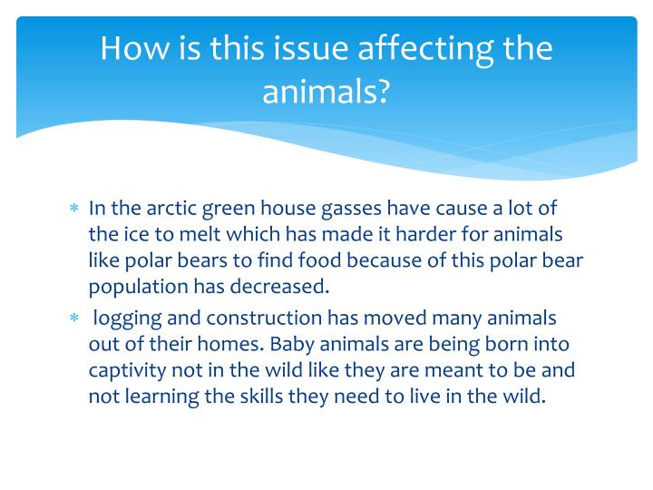 How is this issue affecting the animals?