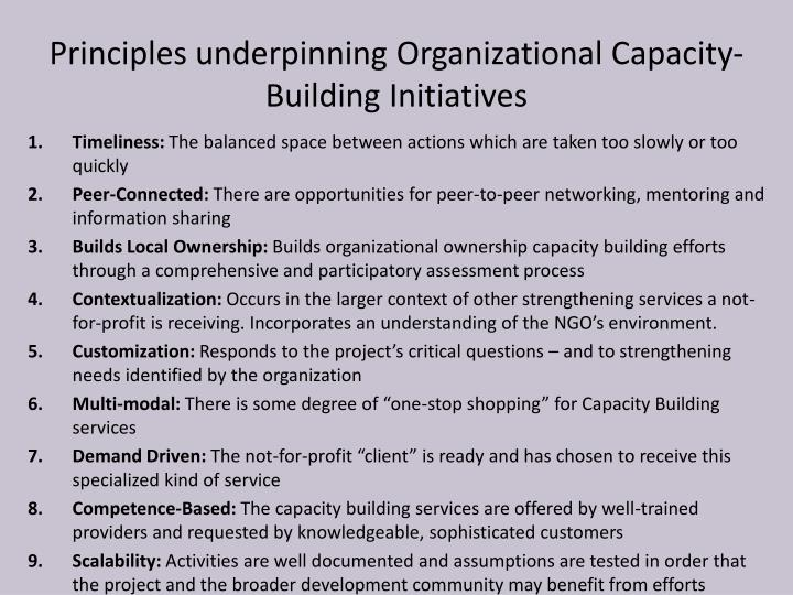 Principles underpinning Organizational Capacity-Building Initiatives