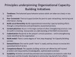 principles underpinning organizational capacity building initiatives